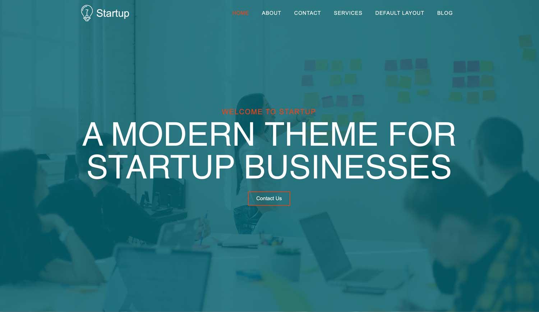 startup-screenshot